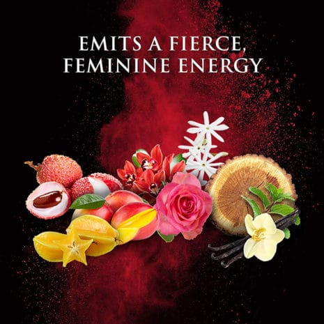 Beyonce Heat Kissed Perfume for Women 50 ml